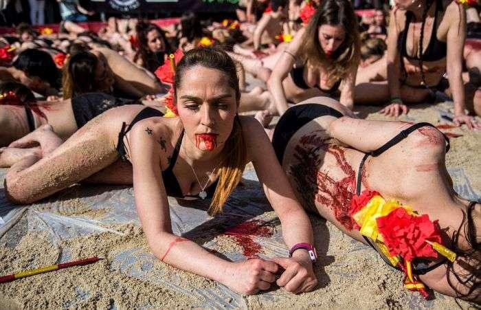 У Мадриді влаштували акцію протесту проти кориди (11 фото)