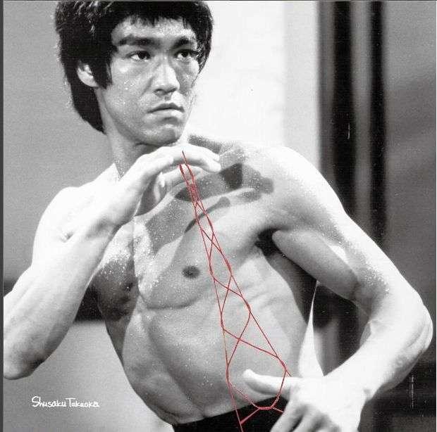 Іронічні колажі Шусаку Takaoka (23 фото)