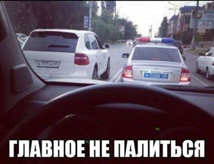 Авто приколи (40 фото)