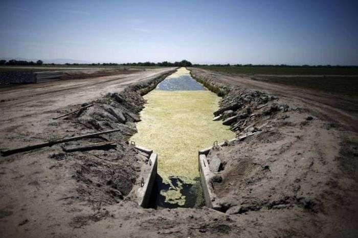 Наслідки посухи в Каліфорнії (21 фото)
