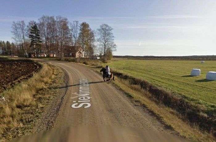 Наслідки зустрічі коні з машиною Google Street View (5 фото)