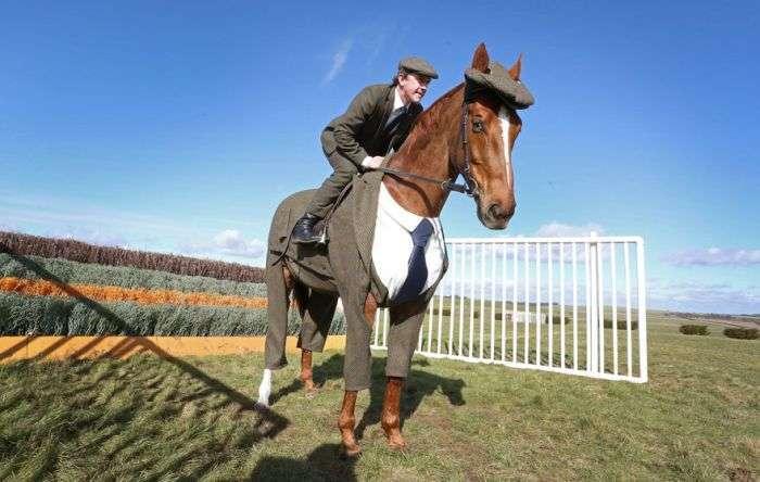 У Великобританії представили перший у світі костюм-трійку для коня (5 фото)
