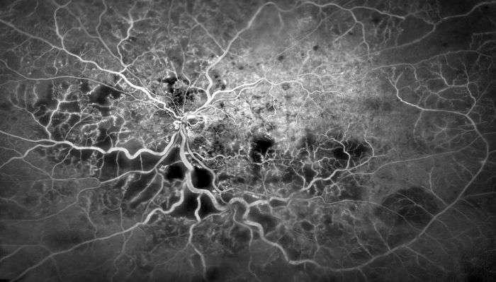 Дивовижні фото з світу науки (20 фото)