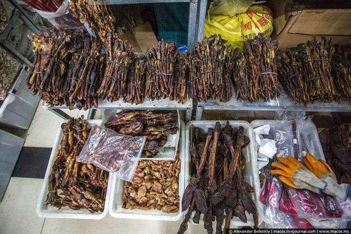 Магазин сушених пенісів в Китаї (8 фото)