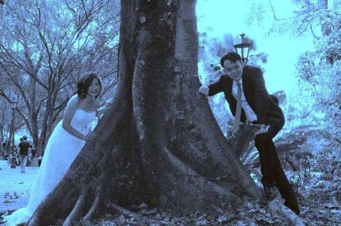 Поганий фотограф зіпсував весілля молодятам (21 фото)