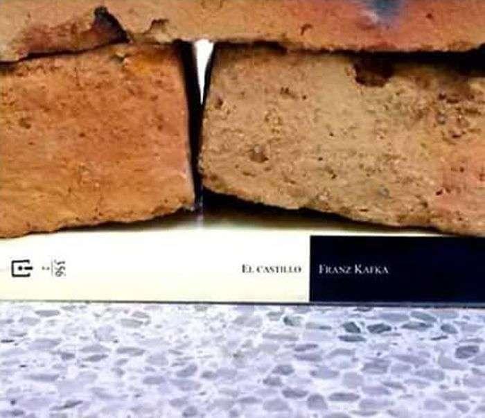 «Вплив однієї книги» - колаж, який отримав популярність в мережі (4 фото)