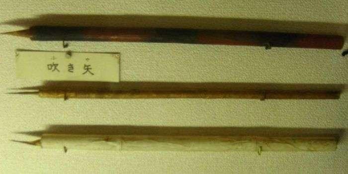 Найбільш смертоносна зброя з арсеналу ніндзя (10 фото)