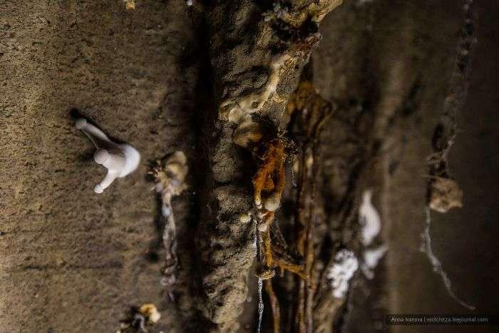 Подорож по мінському підземеллю (42 фото)