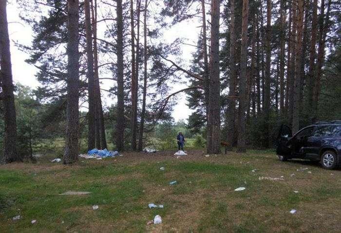 Як дачниця ліс від сміття рятувала (10 фото)