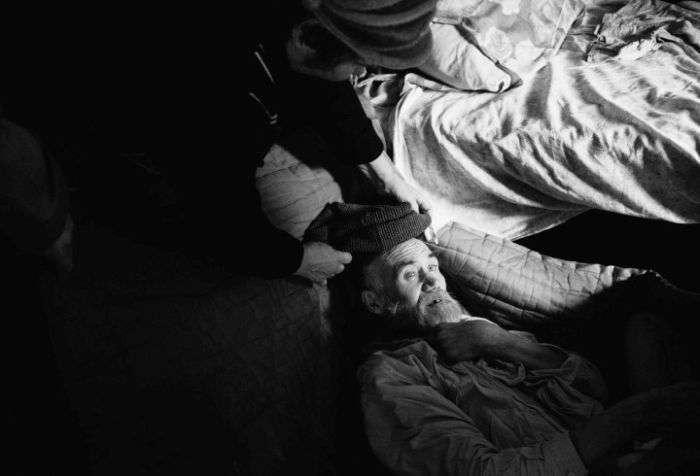 У покинутому селі Пермського краю пенсіонерка відкрила притулок для бездомних (18 фото)