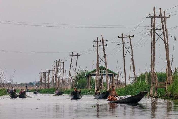 Вирощування овочів на озерах Мянми (32 фото)