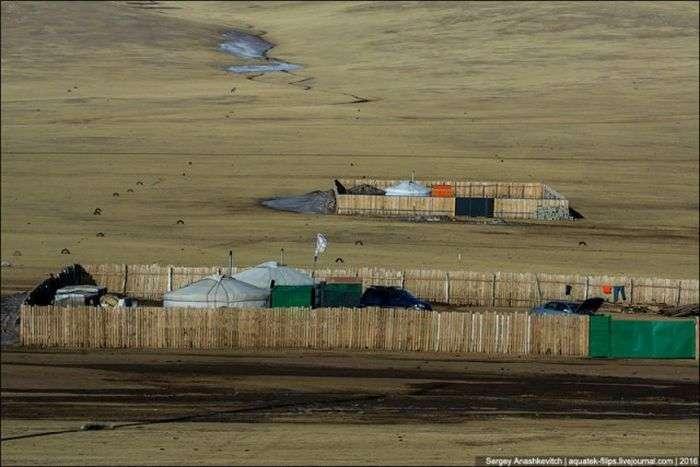 Для чого монголи будують паркани навколо своїх юрт в степах (3 фото)