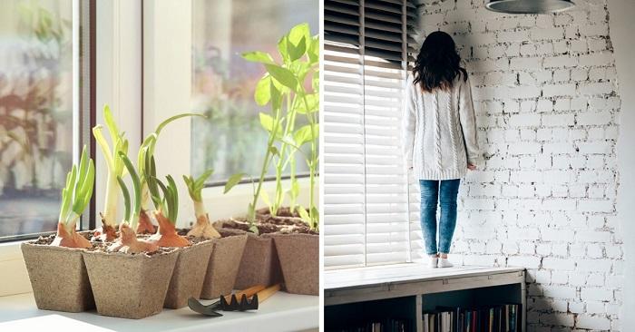 Как превратить подоконник в уютное место отдыха Вдохновение