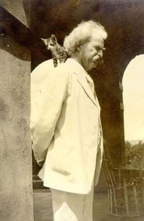 Оказывается, Марк Твен был ещё тем кошачьим папочкой Общество