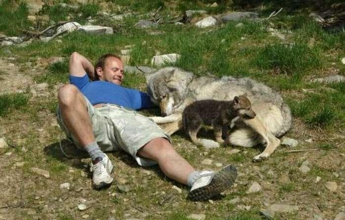 Бегущий с волками: история норвежца, ставшего настоящим альфа-самцом   Интересное