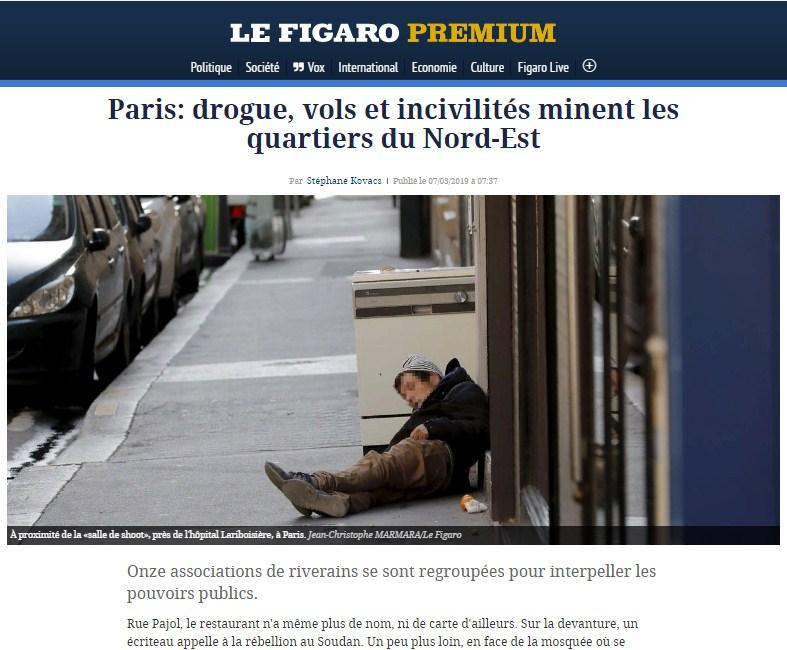 Владимир Карасёв: Париж готов взорваться из-за мигрантов и халяльного мяса политика