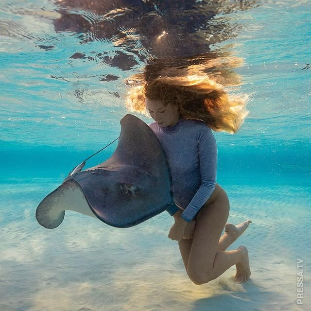 Захватывающие подводные фотографии от Андре Мусгроува
