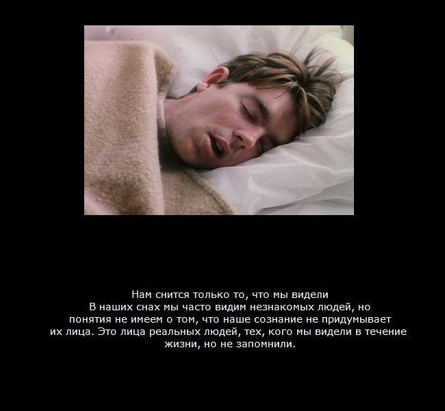 Интересные факты о сне в картинках