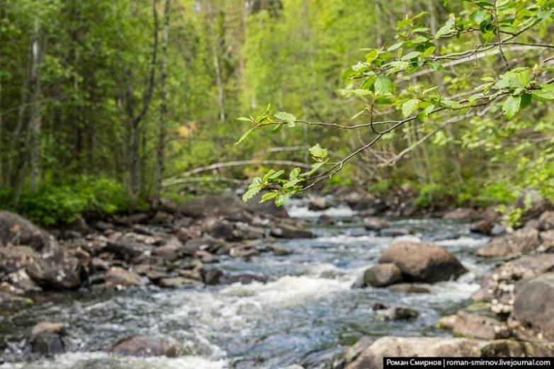 Северная сказка: заповедная Карелия
