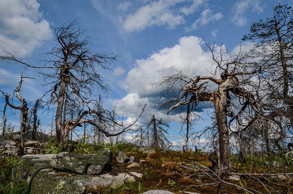 Одно из самых загадочных мест на Земле — гора Воттоваара, Карелия археология