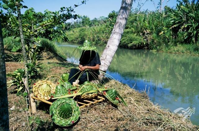 Топ-10 самых экологически чистых стран мира интересное