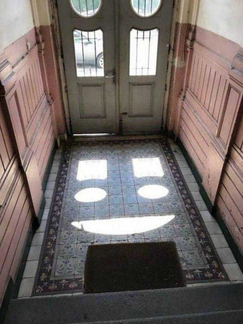 17 случайных кадров, при взгляде на которые невозможно не улыбаться