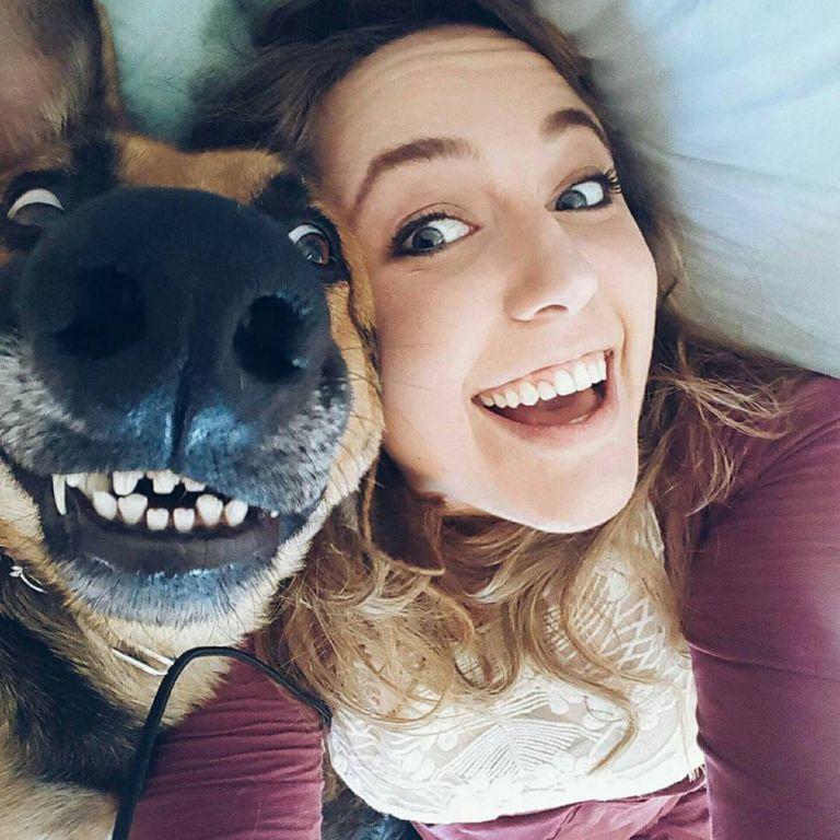 Когда программа «собака» дала сбой и зависла: 15+ забавных фото с домашними любимцами Животные